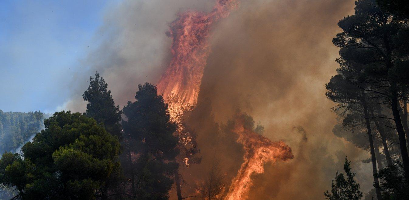Φωτιά τώρα στην Εύβοια: Σε κατάσταση έκτακτης ανάγκης το νησί | Έθνος