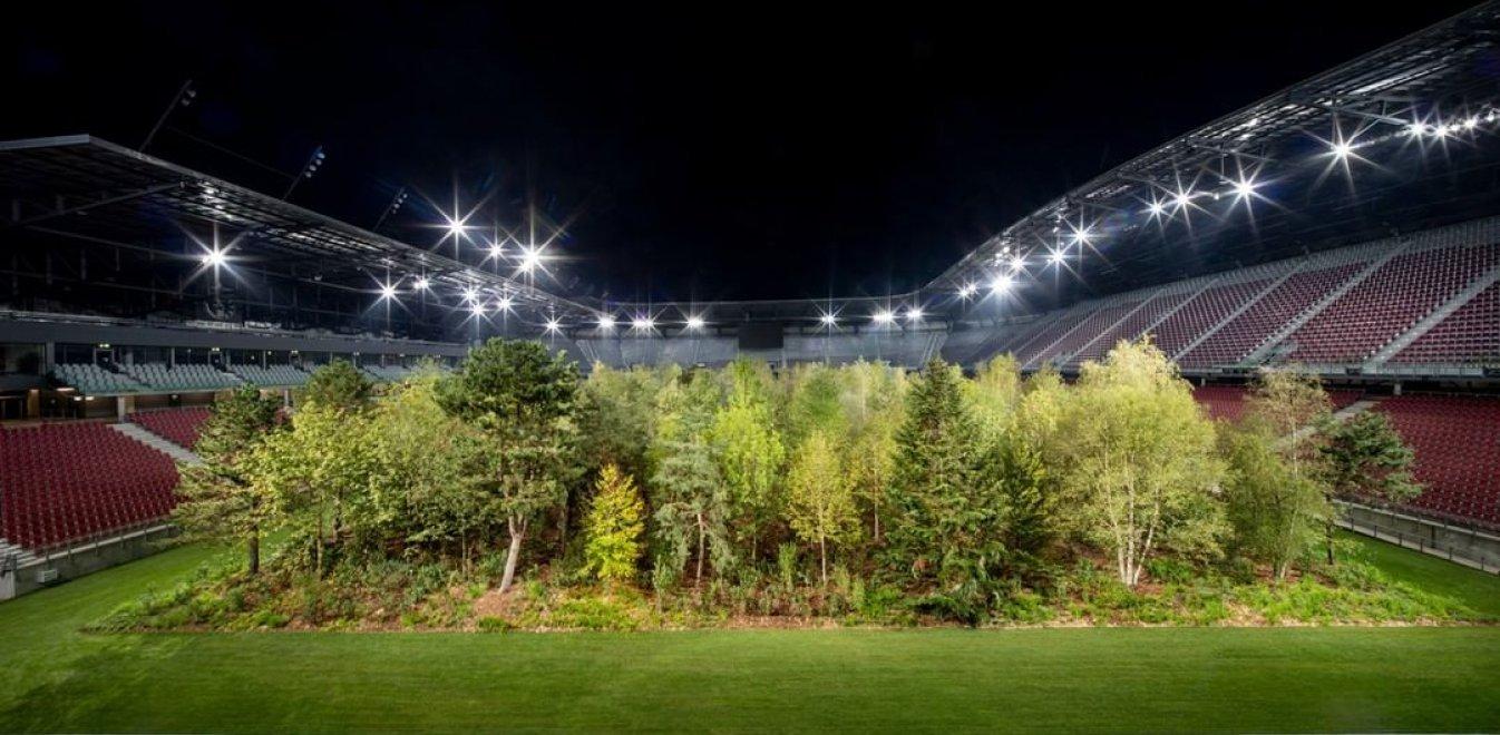 Φύτρωσε ολόκληρο δάσος μέσα σε γήπεδο ποδοσφαίρου (vid)