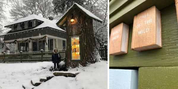 Έφτιαξε βιβλιοθήκη σε δέντρο που σάπιζε και έγινε viral (pics+vid)