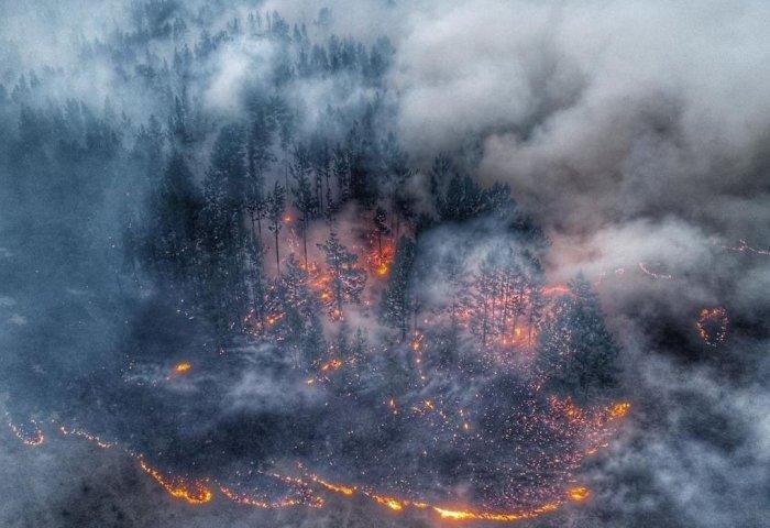 Αποτέλεσμα εικόνας για «Οι φωτιές στη Σιβηρία δεν θα σβήσουν εντός του Αυγούστου»…