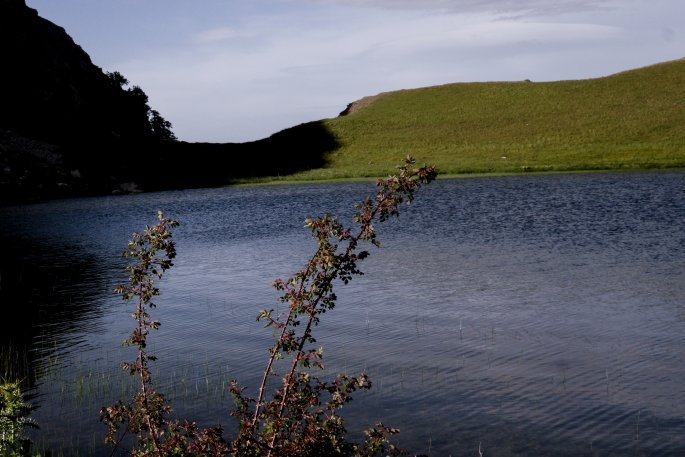 Αλπική λίμνη στο Πάπιγκο