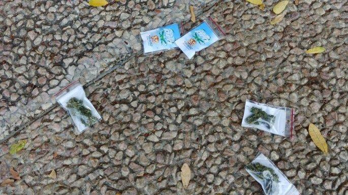marijuana-israel-cannabis.jpg