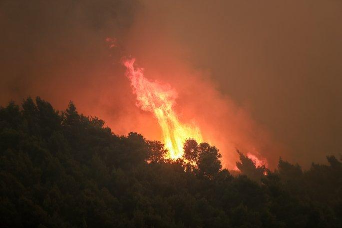 φωτιά στο Σχίνο Κορινθίας